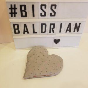 Baldrian Kissen – Herz Edition