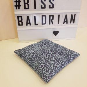 Baldrian Kissen – XXL 20x20cm