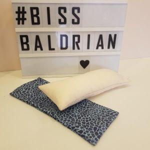 Baldrian Kissen – XXL Spielrolle
